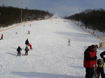 Ski Resort Hohe Wand Wiese